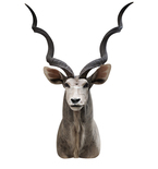 Stern Antelope Mount Vinyl Wall Decal