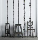 Birch Tree Vinyl Wall Decals