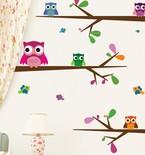 Big-Eyed Baby Owls Vinyl Wall Decals