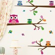 Big-Eyed Baby Owls Vinyl Wall Decals