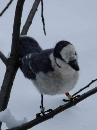 Algonquin Park Banded Gray Jay Bird - Wool Needle Felted Fiber Art Sculpture