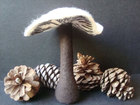 Mycology Plush Woodland Whimsy Winter Forest Mushroom Limited Edition Plush Fabric Sculpture