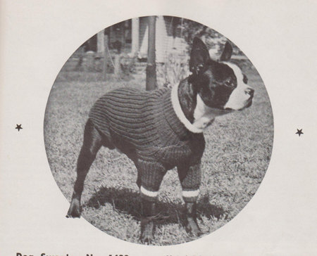 Knitted Dog Sweater Vintage Knitting Pattern 1930s Original For