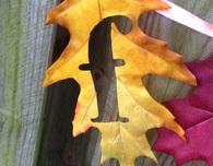 Fall Leaf Banner