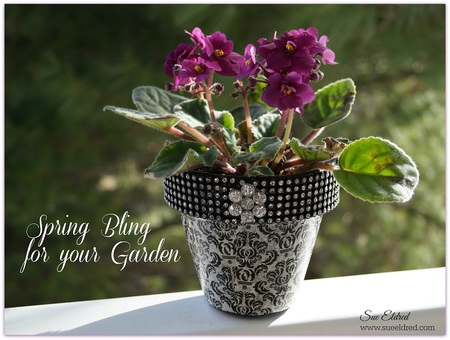 Spring Bling for your Garden