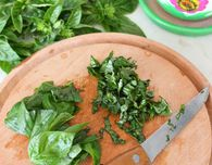 How to preserve fresh basil in winter