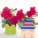 Milk Carton Flower Pots