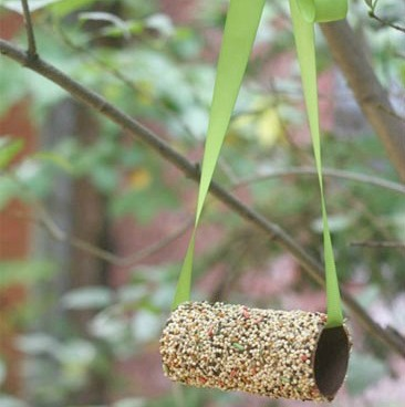 Practical Bird Feeder From Toilet Paper Roll