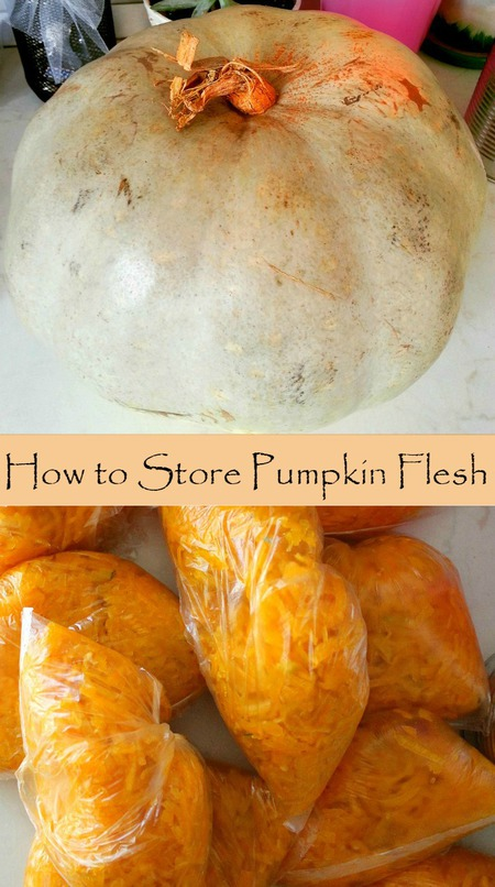 How to store pumpkin flesh