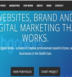 Hiring Professional Web Designers - A Firm Step towards Brand Building