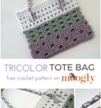 Tricolor Tote