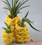 Lucky Pineapple Plant Hangers