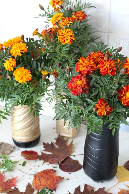 DIY flower vase with plastic bottle