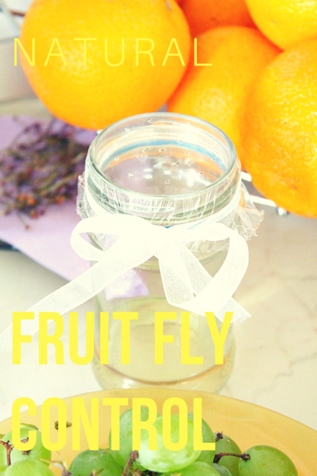 Natural fruit fly repellents