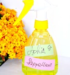 Natural aphid spray