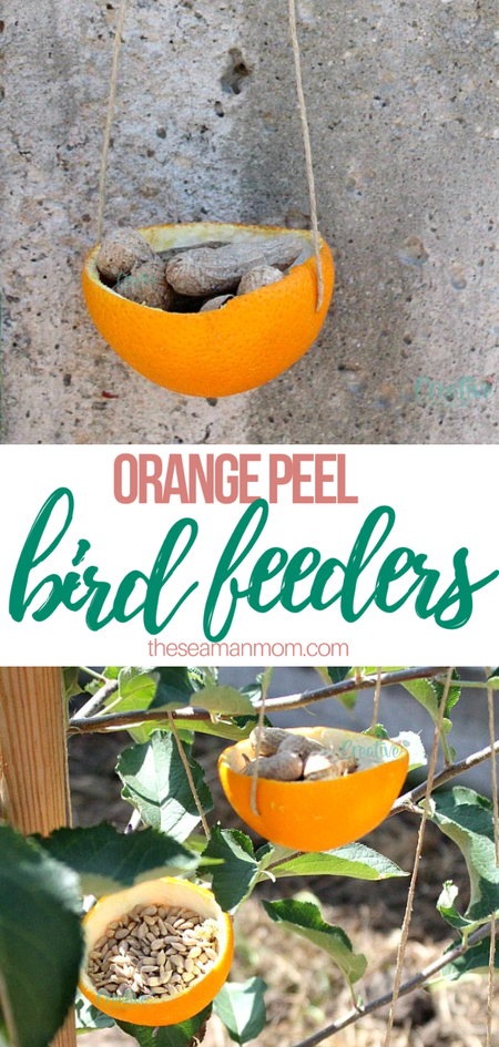 Orange peel bird feeders