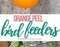 Orange peel bird feeders