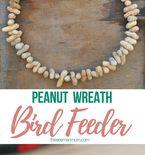 Peanut bird feeder wreath