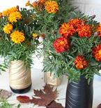 Plastic bottle flowers vase