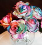 Painting Rainbow Roses