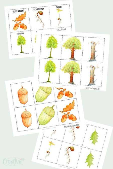 Oak Tree Printable
