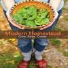 cover of modern homesteading