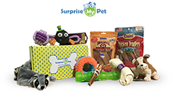 Single Surprise My Pet Box