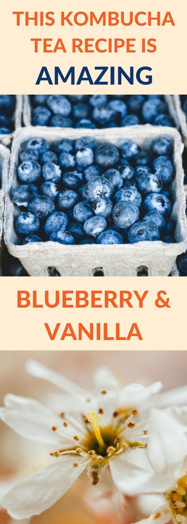 flavor kombucha blueberry vanilla pin