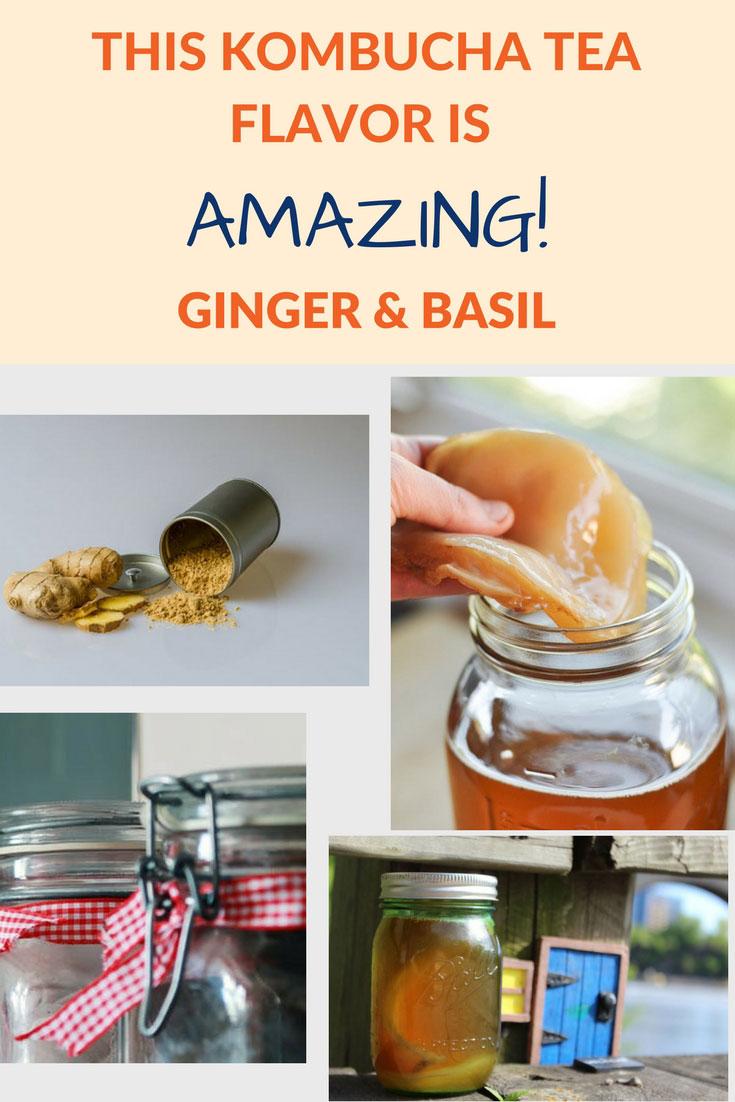 flavor kombucha ginger basil