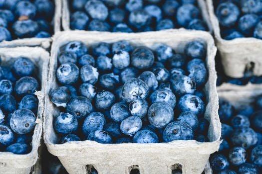 blueberriesfor kombucha tea