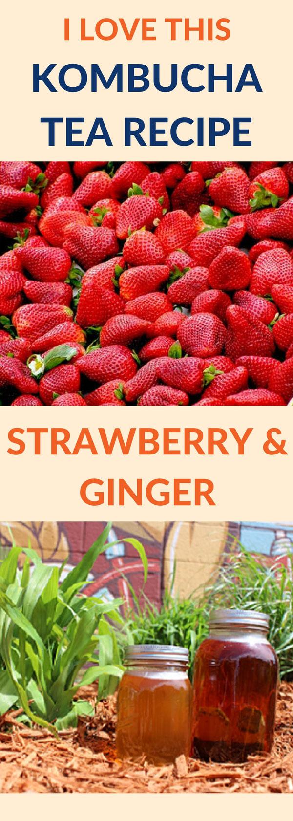 flavor kombucha strawberry ginger pin