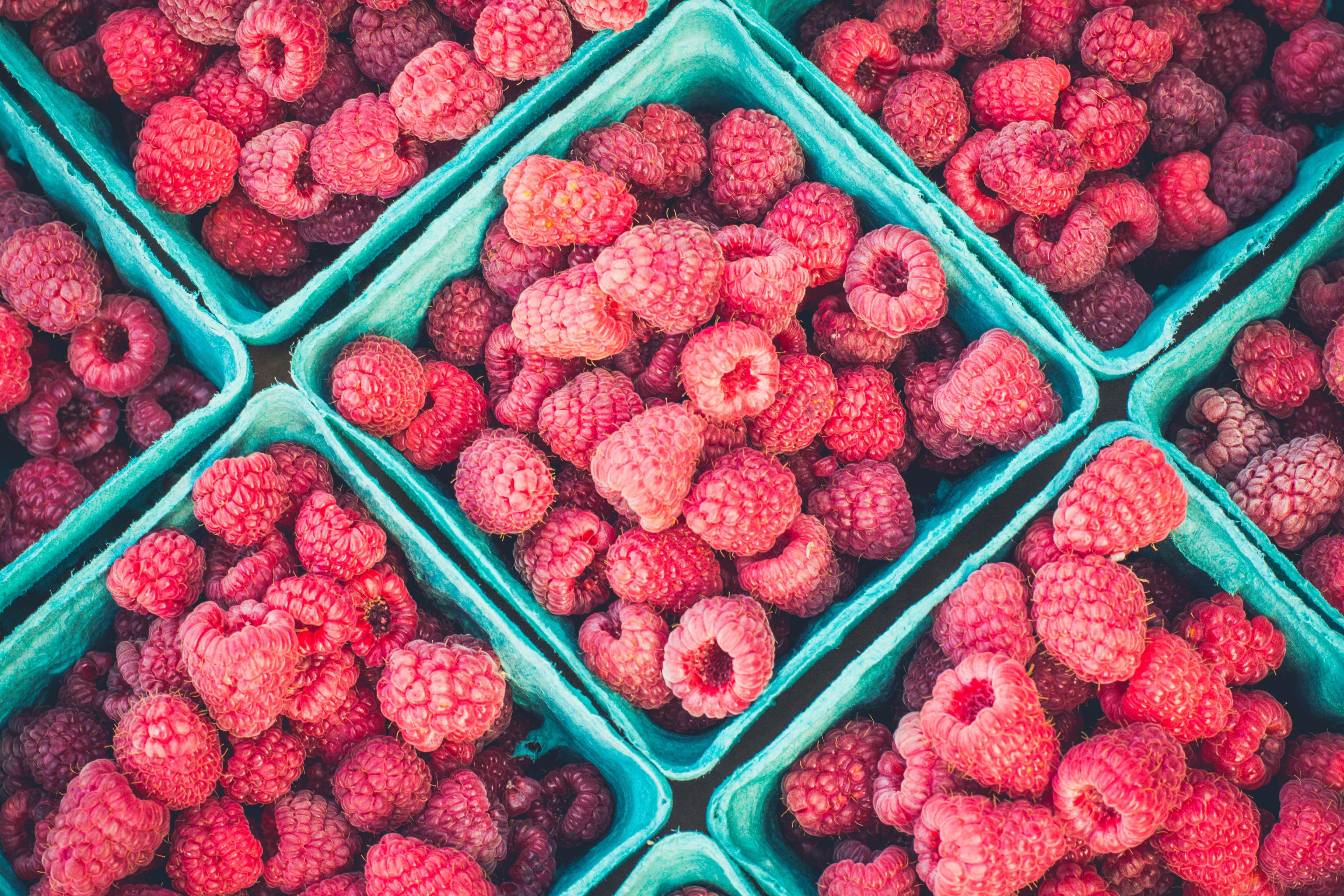 raspberry for kombucha tea