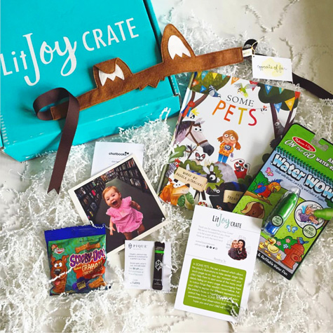 Picture Book Past Crate - Pets