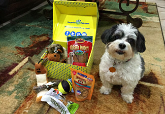 Happy dog and her subscription box