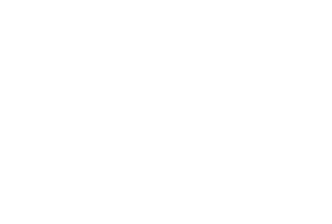 SB One logo white