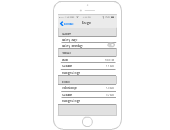 iOS Mockups Templates