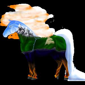 Koń wierzchowy Angloarab Shagya Jasnosiwa