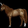 Unicorn pony Cremello