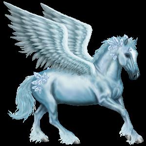 Pegasus Argentinsk Criollo Mörkfux