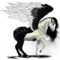 Riding pegasus Arabian Horse Light Gray