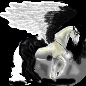 Riding pegasus Arabian Horse Black