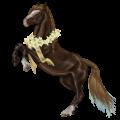 Cheval de selle Mustang Alezan Brûlé