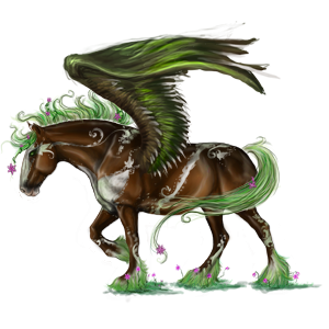 Pegasus Friese Rappe