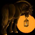 Rijpaard Akhal-Teke Bruin