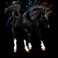 Jednorożec Koń fryzyjski Kara