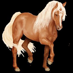 Pegasus-Reitpferd Andalusier Cremello