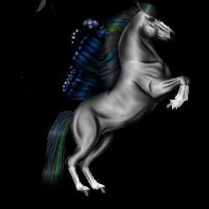 Jezdecký pegas Achaltekinský kůň Palomino