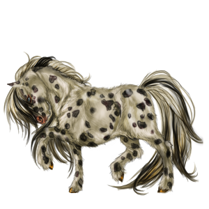 Pony Shetland Cremello