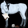 Jezdecký kůň Anglický plnokrevník Játrový ryzák