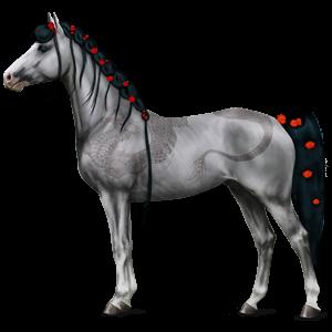 Jezdecký kůň American paint horse Palomino Tobiano